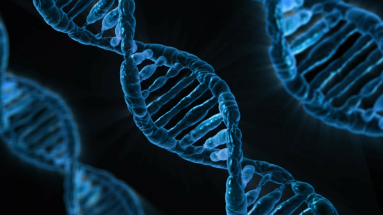 DNA shows youthful properties, could prevent diseases