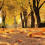 The Elderly's Guide to Preparing for Autumn