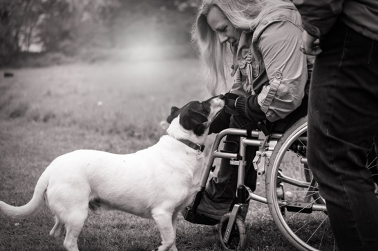 A woman in a wheelchair stroking a dog.